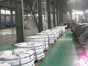 Galvanized Steel Strips